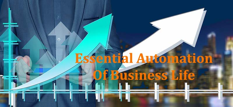 Automation Of Business Life