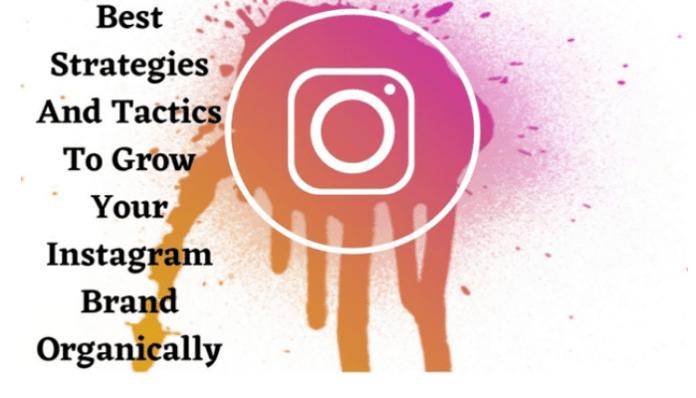 Instagram Organically